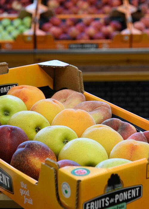 Fruita Fruits de Ponent - Pack 1