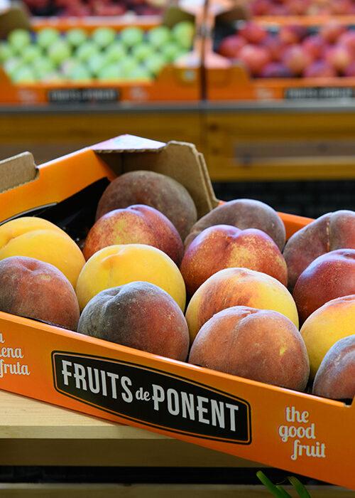 Fruita Fruits de Ponent - Pack 2